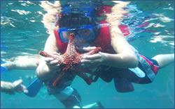 Deep sea small game fishing snorkeling in huatulco for Deep sea fishing santa cruz